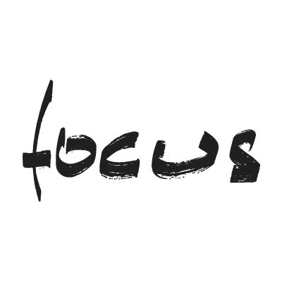 Focus-Fireplaces